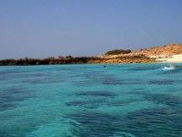 daymaniyat-islands-nature